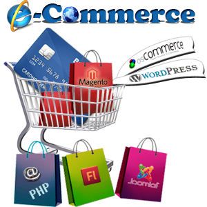 e-Commerce Website Development in Panipat