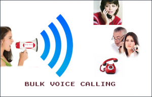 voice sms service provider in panipat