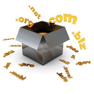 Domain Transfer Service in Panipat
